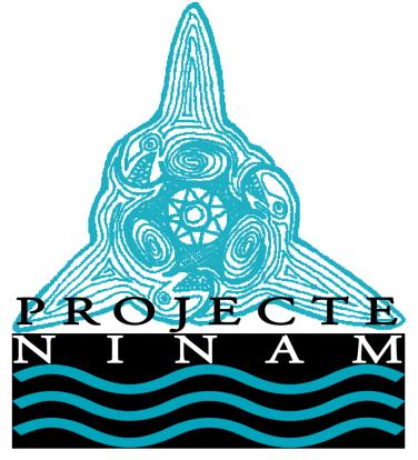 logo_ninam-sol-bc3b3-copia