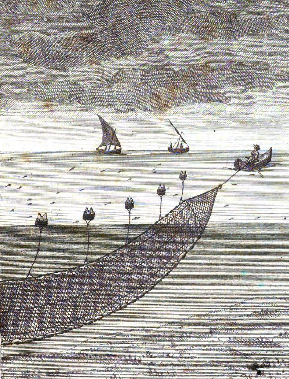 """Calada de sardinals """"a la prima"""" segons una il.lustració del """"Diccionario histórico de los artes de pesca nacioanal"""""""