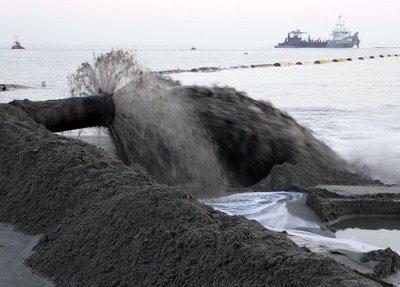 Les regeneracions de platges van acabar amb els bancs de petina lluent