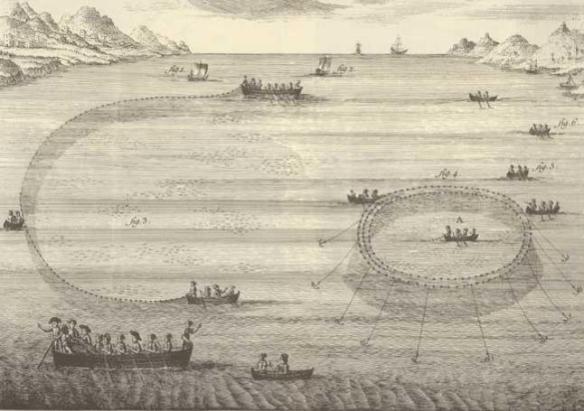 Un dels 347 gravats obra de Juan batista Bru que es poden trobar al Diccionario
