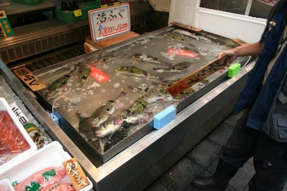 FuguSaleOsaka